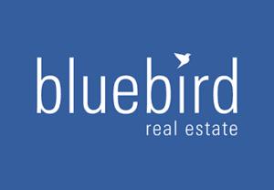 Bluebird-Thumbnail-300x208
